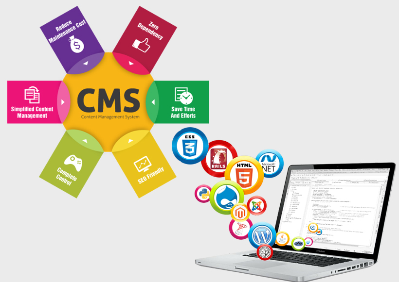 What are content management systems (CMS)?